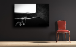 Canvas-4-e1402087723956